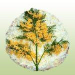 Салат мимоза рецепт с консервами и сыром