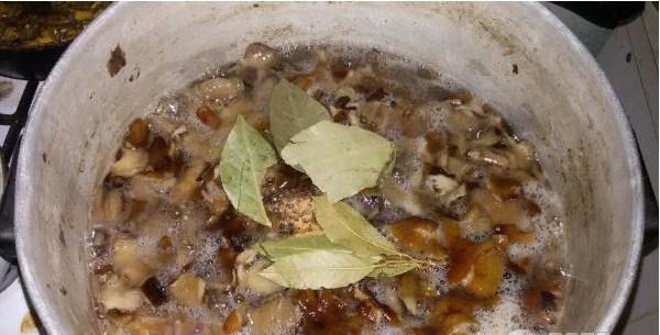 Вареные опята с чесноком и растительным маслом - рецепт пошаговый с фото